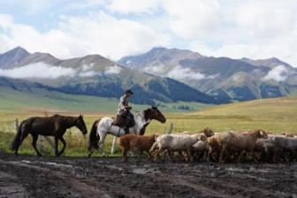 Herders revel in tradition and tourism